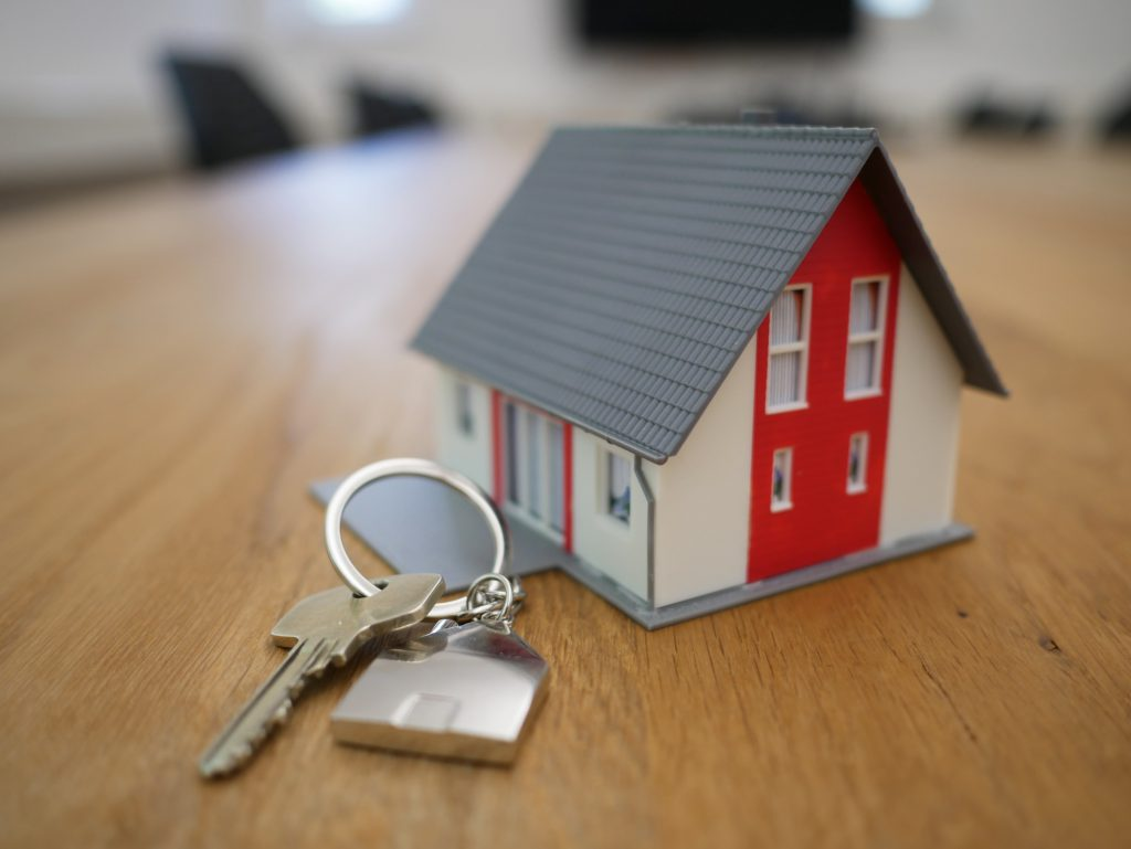 טרם השיווק: חברת 'גיא ודורון לוי' מכרה 50% מהדירות
