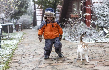"""השלג כבר בחרמון- כפר הנופש רימונים נווה אטי""""ב מציע חופשה חורפית"""