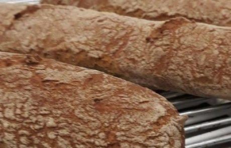 איזה לחם הכי בריא?