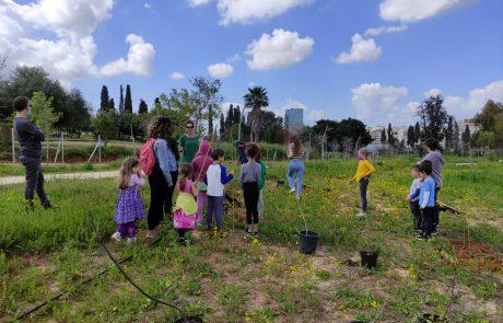 ירוקה מתמיד: למעלה מ-160 עצים ניטעו ביער האקלים החדש בעיר