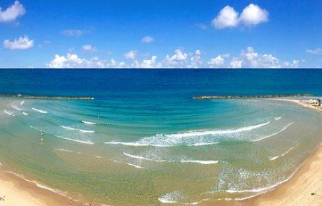 """האם יופעלו קווי-שבת לחוף הים ולת""""א, בחסות העירייה?"""