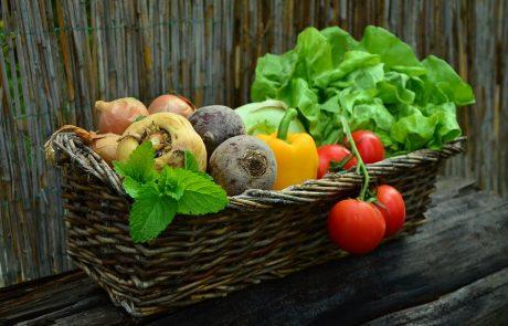 למה כדאי לכם לאכול ירקות?